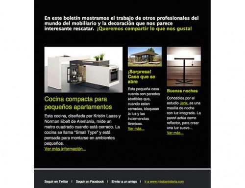 Diseño de newsletter para ebanistería